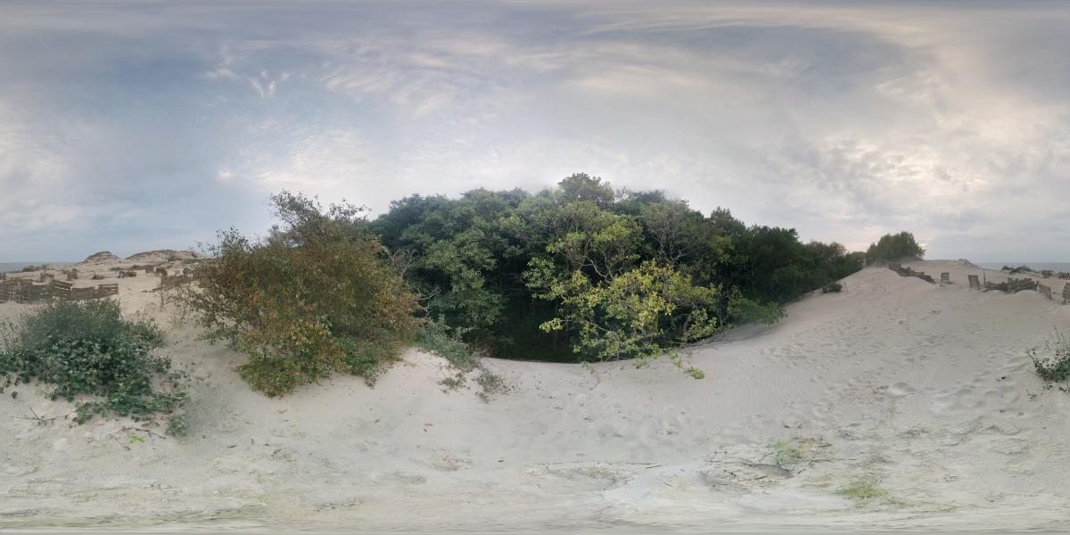 На Куршской косе - Осыпающиеся дюны